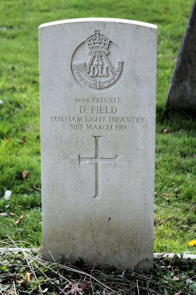 Daniel Field