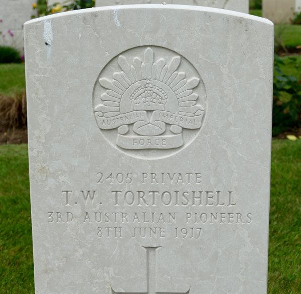 T W Tortoishell